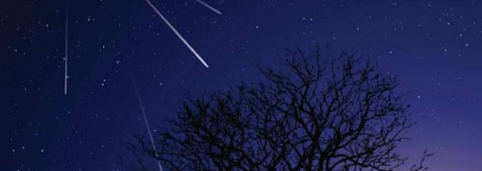 Night of Shooting Stars: Meteor Shower Camelopardalid