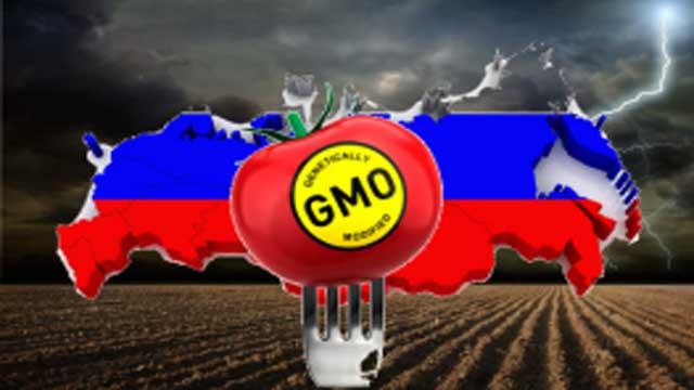 http://consciouslifenews.com/wp-content/uploads/2014/05/russia_gmo_no-263x164.jpg