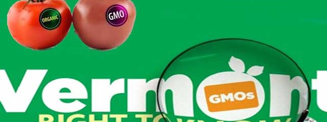 Vermont Officially Passes GMO Lableing Bill, Monsanto Announces Lawsuit