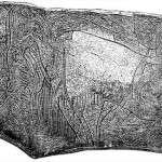 The Mammoth That Trampled On the History Of Mankind