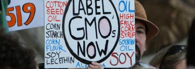 Local GMO Fights Smash Records as Monsanto's Millions Bankroll Opposition