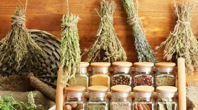 2 Ancient Root Herbs Boost Total Immunity And Resistance