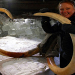 40,000-year-old Blood Brings Mammoth Cloning Closer