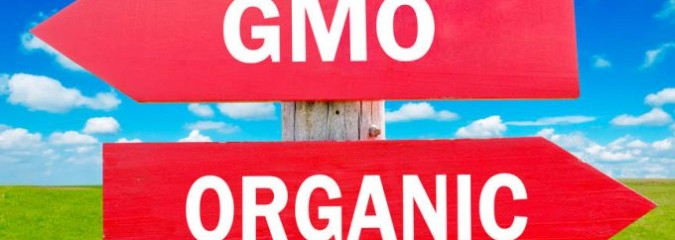 The Secret GMO War: Double Agents, Betrayal, Greed?