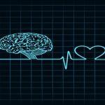 The Rosetta Stone of Body Language