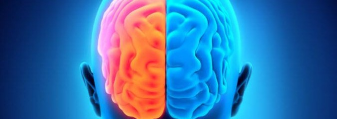 Busting the Left Brain vs Right Brain Myth