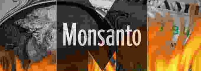 Monsanto Earnings Fall 34% as Farmers Reject GMO Crops