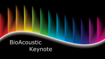 How Are Universal Frequencies Affecting YOU [March 1-7, 2015]?