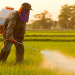 Agribusiness Bullies Attack Scientists Who Reveal Herbicide Health Threats