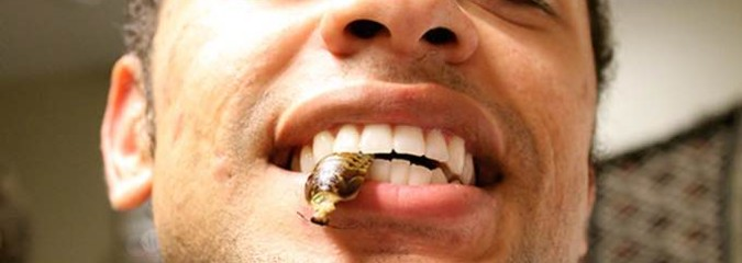 Can Bugs End World Hunger? American Student Goes On 30-Day Insect Diet to Show Viability