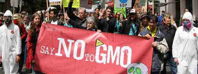 New York Moves Forward with GMO Labeling Bills