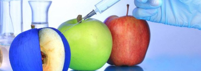2 Surefire Ways to Know If You're Buying the New GMO Apple
