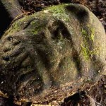 Lost City Discovered in Honduran Rain Forest