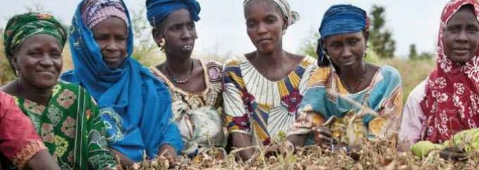 Saving Seeds: Farmers Rise Up Against Industry-Backed Laws that Criminalize Seed Sharing