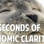 105 Seconds Of Economic Clarity