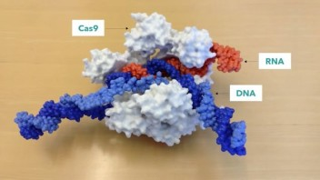 We Can Now Edit Our DNA (with CRISPR-Cas9), So How Can We Do It Wisely?