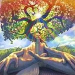 Building a Bridge between Spirituality and Social Action