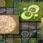 Crop Circles, Jung, and the Archetypal Feminine