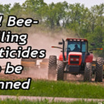 Win! U.S. Fish & Wildlife Service to Ban Use of Bee, Bird and Butterfly-Killing Neonicotinoids