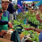 Ten Ways We Can Build a Better Economic System