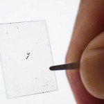 Scientists Create World's Thinnest Electrical Generator That's Only 1 Atom Wide