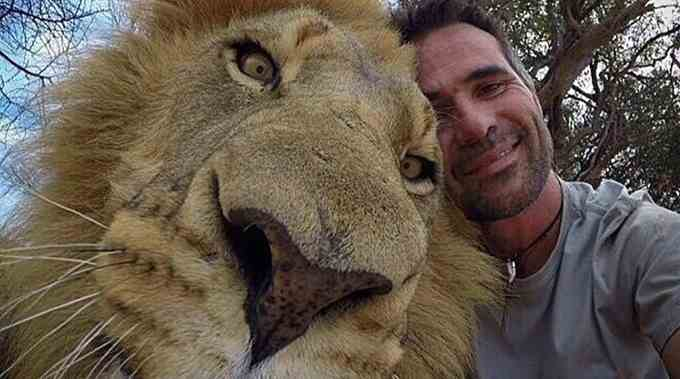 Ny Bans Taking Selfies With Lions Amp Other New State Laws