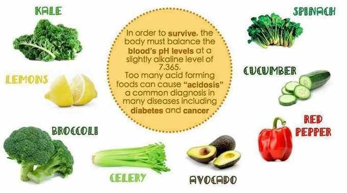 The Most High Alkaline Foods