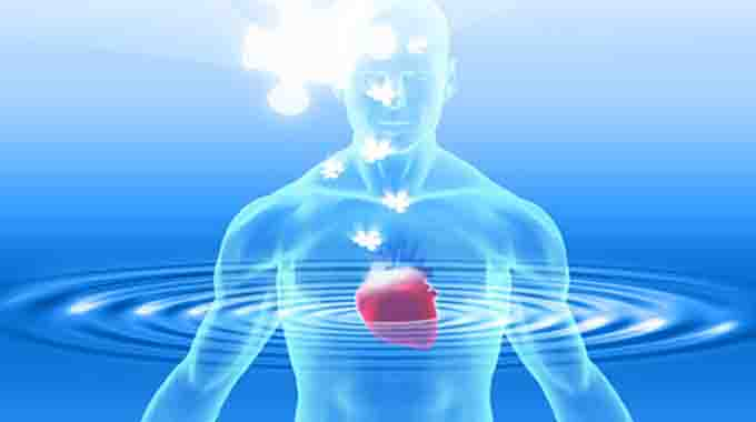 Neurological Indicators Show That Your Heart Is Your True