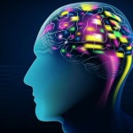 How Your Thoughts Can Change the Structure And Function Of Your Brain