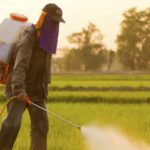 Conscious Legacy: EPA Scientist's Dying Wish Reveals Monsanto Lies Harmful To Humanity