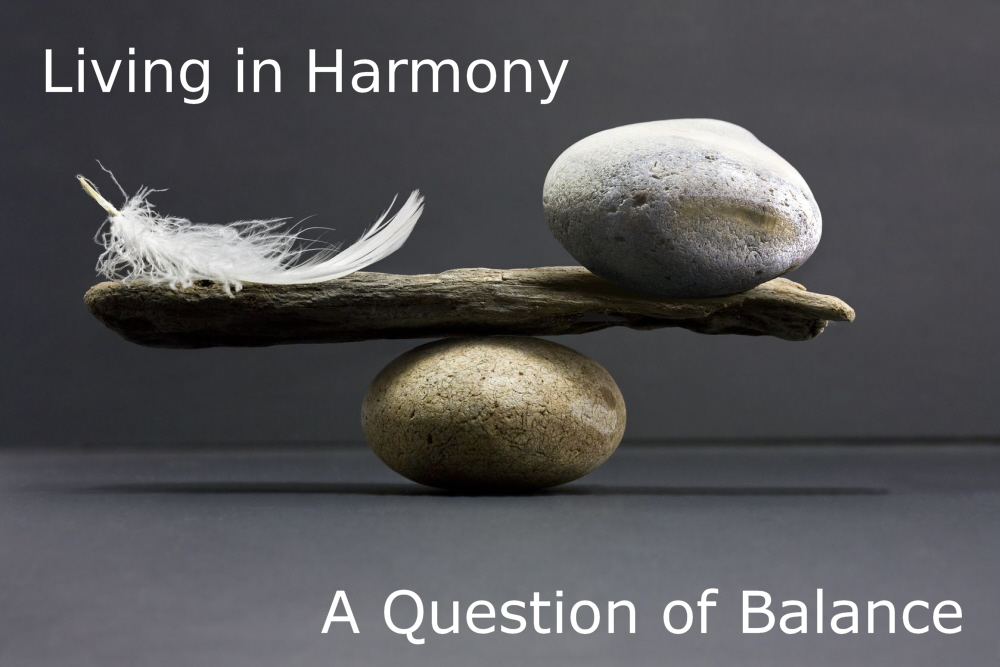 Living In Harmony A Question Of Balance Conscious Life News