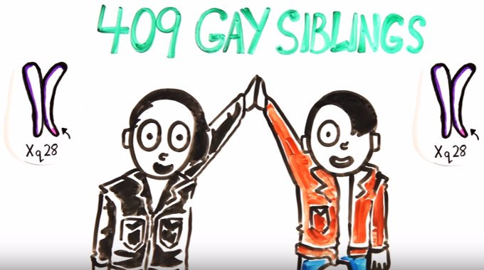 Epigenetic tags homosexuality