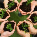 3 Characteristics of Small Thriving Communities That Work For Everyone